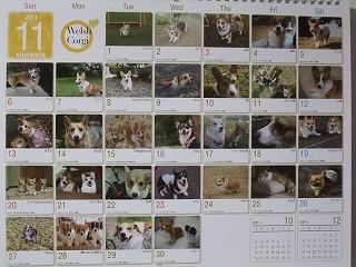 365カレンダー☆まろん