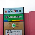 Photos: ぐりんぱ-Grinpa-:ピカソのタマゴ:アンジュレーションスクリーン