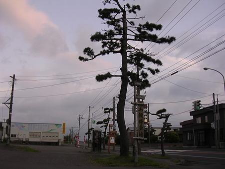 山越駅構内入口