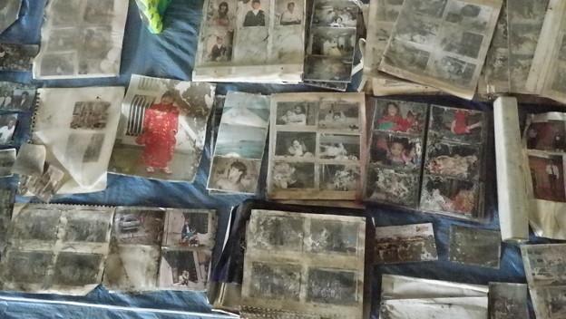 写真: 救出された写真