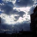 Photos: 20101106095505
