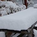 Photos: 雪の診察台