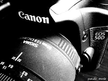 CANON EOS 50D SIGMA50mmF2.8MACRO