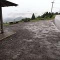 2011年6月5日、丸山千枚田