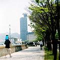 Photos: 親子
