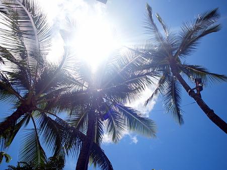 100421_Hawaii02