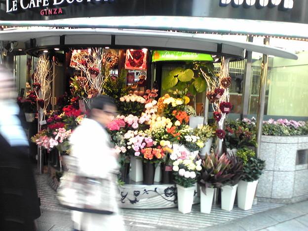 フォト蔵銀座四丁目でオシャレな花屋。アルバム: モバツイ (170)写真データフォト蔵ツイート