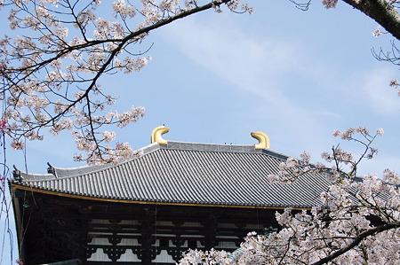 東大寺大仏殿2010年04月04日_DSC_1135