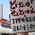 写真: TPP交渉参加阻止緊急集会7