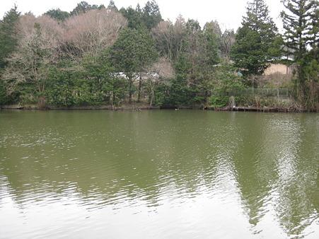 大正地池 (2)