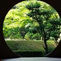 Photos: 20100606_084648