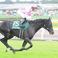 Photos: コスモヴァシュラン@富士S 返し馬