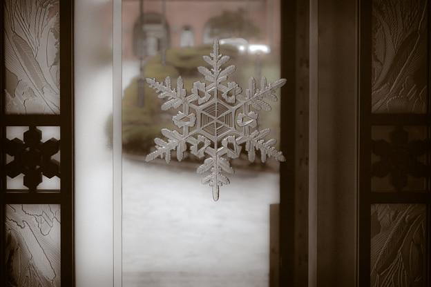 雪の美術館(snow)