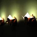Photos: ライト三兄弟