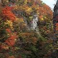 紅葉盛り・鳴子峡