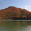 山の上の潟沼