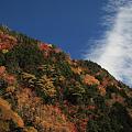秋色の金精峠