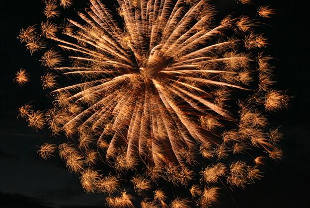 写真: The Fourth of July 7