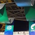 COP10