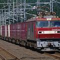 Photos: s9170_海峡線上り貨物列車_EH500-53+コキ_津軽今別