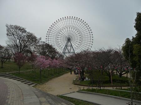 100331-天保山公園 (9)