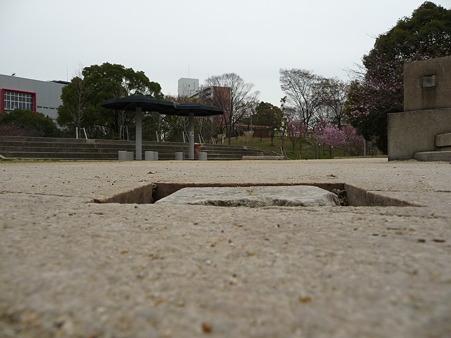 100331-天保山公園 (10)