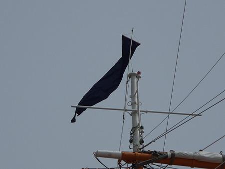 100429-日本丸 総帆展帆-5