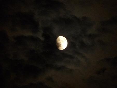 100722-お月さん (2)