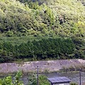 写真: JR西日本・三江線、信木駅