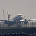 Photos: 春霞の中の旅客機