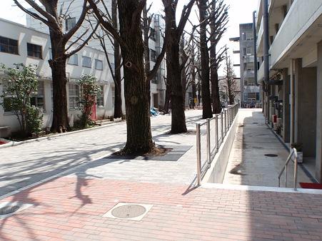 東京工業大学大岡山キャンパス 南2号館前道路