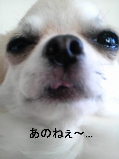 あのね★日村