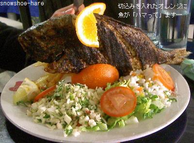 立てられてる焼き魚