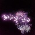 写真: 今年3回目の花火