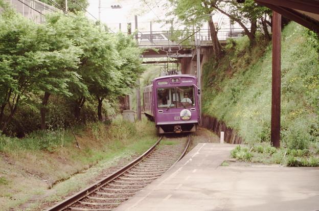 嵐電、京紫