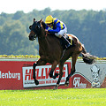 Photos: 071003Hoppegarten Sly Tiger