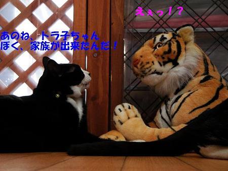 ひじき&トラ子