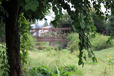 2010.09.24 和泉川 景色