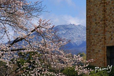 雪の積もった山と・・京都街角sketch・・9