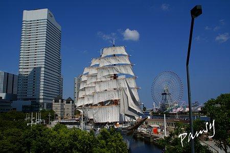 総帆展帆のにっぽん丸と・・青空と・・