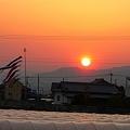 Photos: 夕日に(恋)して・・・。