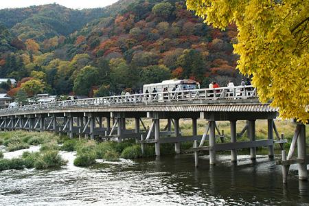 渡月橋の錦秋!(101124)