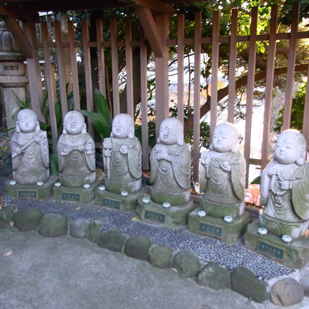 【東京|神社仏閣】 大円寺 (50)