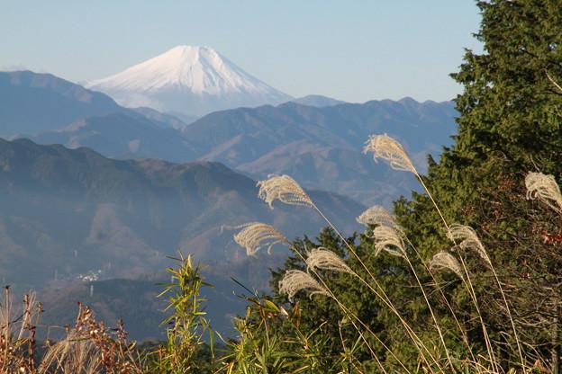Photos: 101215-66もみじ台からの富士山