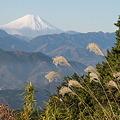 101215-66もみじ台からの富士山