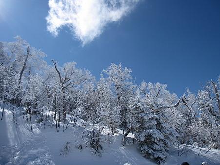 スキー教室 235