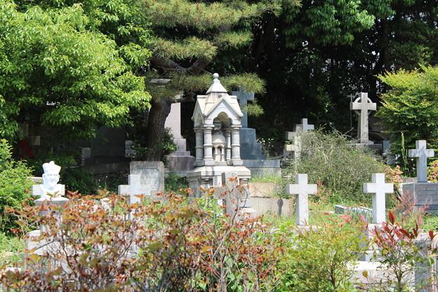 横浜外国人墓地4