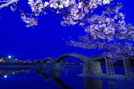 夜桜錦帯橋(1)