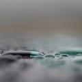 写真: 水色の水玉(2)