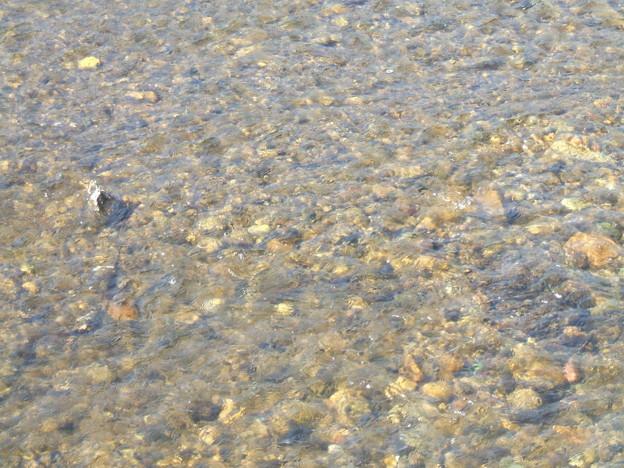 湯川の水面